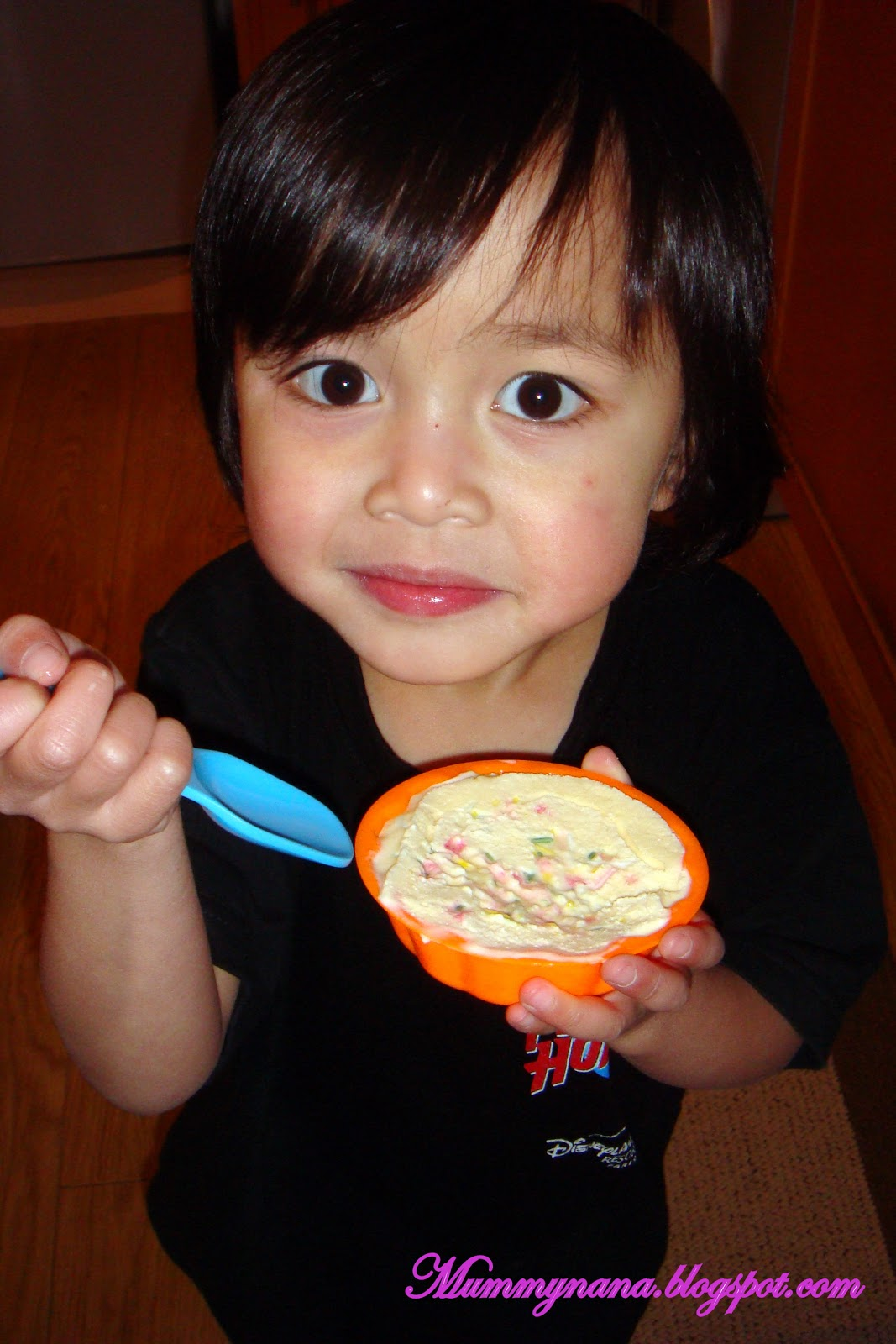 kitchenaid gelato mix instructions
