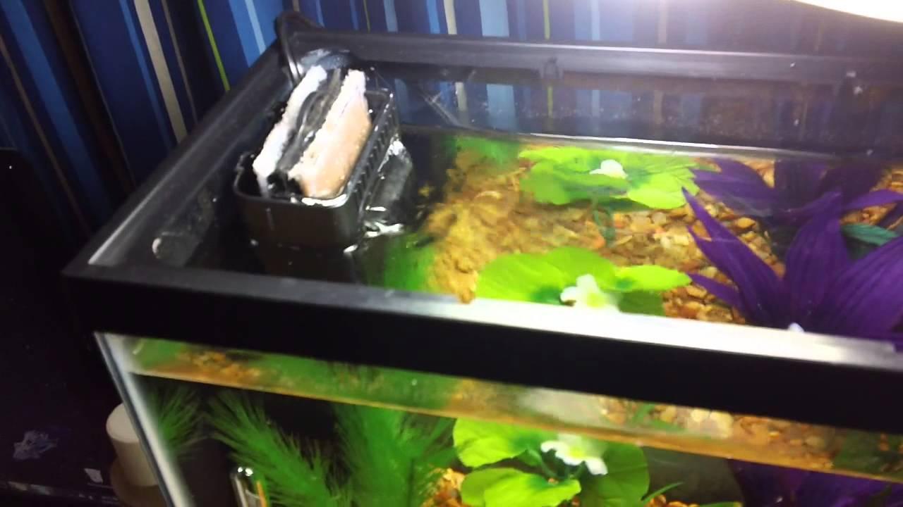 instruction filtre aquarium marina