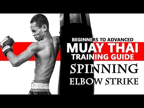 the mixed martial arts instruction manual striking pdf