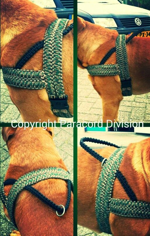 how to make dog harness instructions