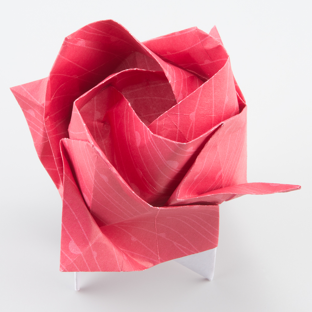 easy kawasaki rose instructions