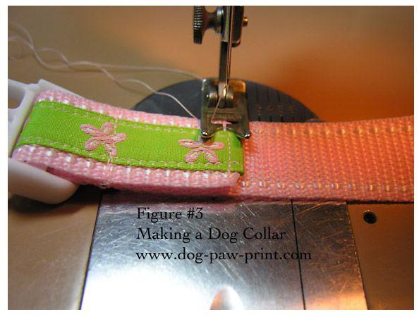 peston dog training collar instructions
