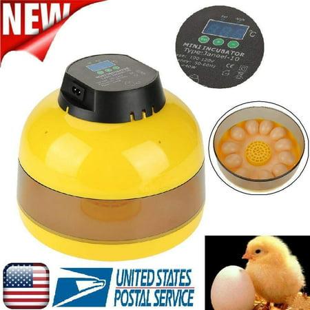 12 egg incubator instructions
