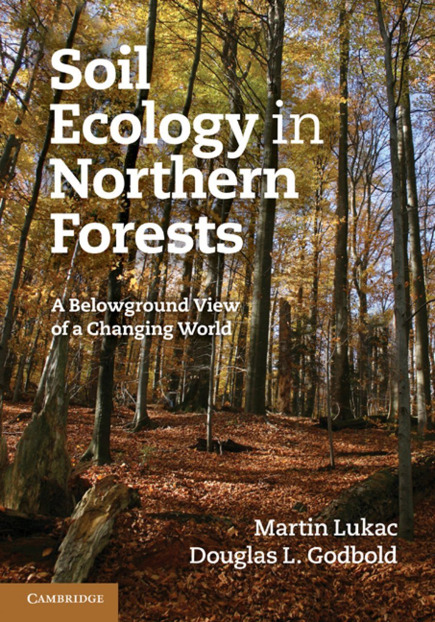 ecology letters instructions for authors