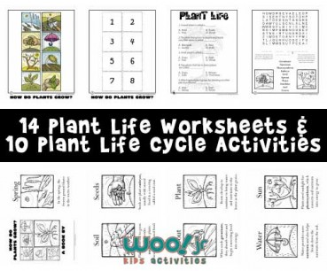 grow a frog instruction booklet