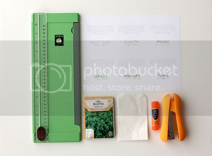 cilantro seed printable instructions