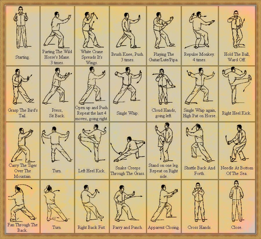 exercise instructions for beginners